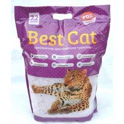Fox Best Cat Lawanda