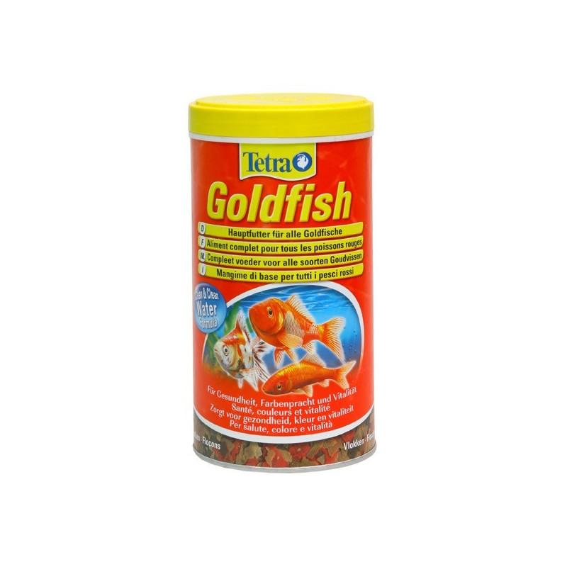 Tetra Goldfish Colour