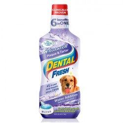 SynergyLabs Dental Fresh Advanced