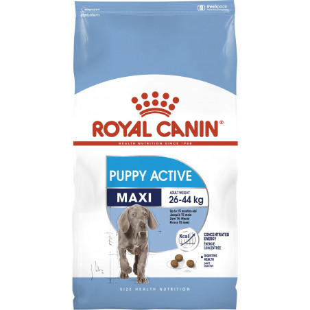 Royal Canin Maxi Puppy ( Junior) Active