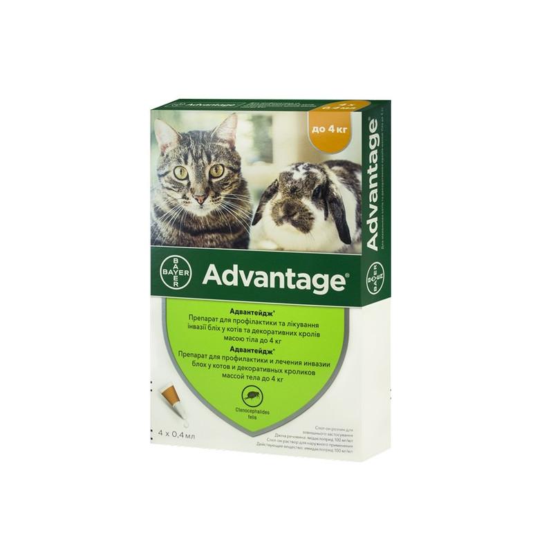 Bayer Advantage 40 для кошек до 4 кг