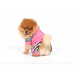 DoggyDolly Комбинезон Mix 3 colors poodle