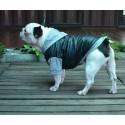 DoggyDolly куртка с капюшоном