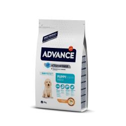 Advance Maxi Puppy