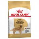 Royal Canin Golden Retriver Adult