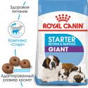 Royal Canin Starter