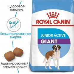 Royal Canin Junior Active