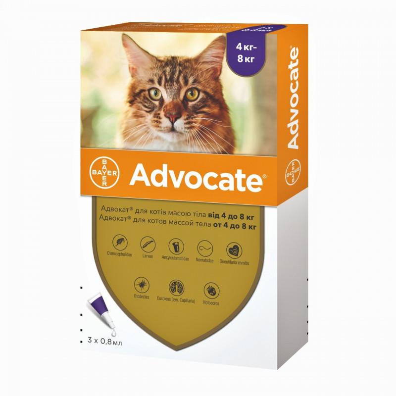 Bayer Advocate для кошек от 4 до 8 кг