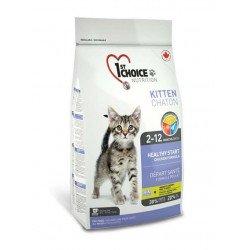 1st Choice Kitten