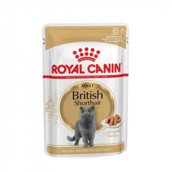 Royal Canin British Shorthair Adult в соусе
