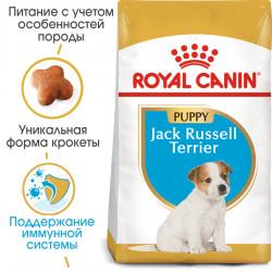 Royal Canin Jack Russel Junior