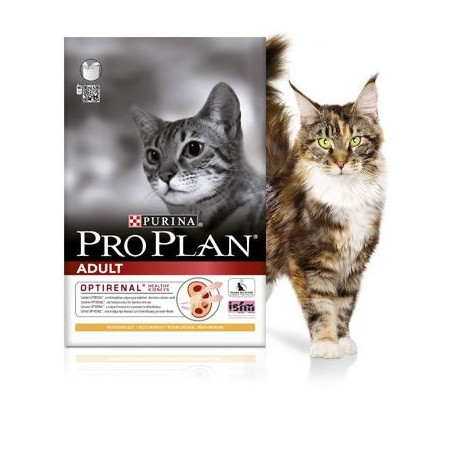 Pro Plan Adult Salmon Feline